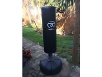 Boxing Mad Freestanding Punch Bag