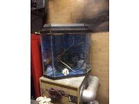 Corner glass fish tank with pump ornaments etc