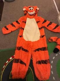 Winnie the Pooh and tigger, children's costumes