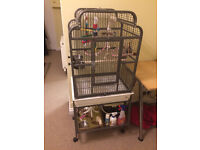 Large Bird Cage With Many Accessories.Everything Needed to Keep a Parrot and Train.Only Months old.