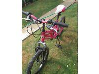 Girls pink muddy fox bike