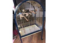 Large open top parrot cage