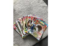 Guinea Pig magazines