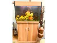 AQUA ONE 145 Litre Fish Tank Aquarium