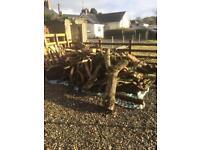 Logs / firewood / timber