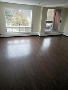 CLAYTON PARK'S BEST LRG. 2 BDRM. 2 LEVEL RENOVATED AVAIL JAN 1