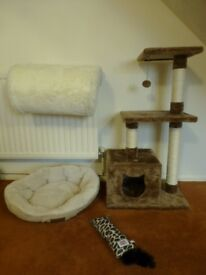Cat items *job lot* cat tree, radiator bed, bed and kicker toy