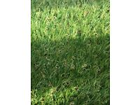 Long length of artificial grass