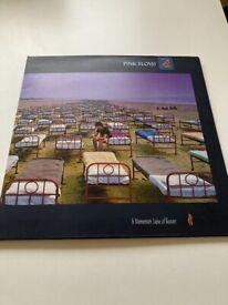 Pink Floyd A Momentary Laspe of Reason vinyl