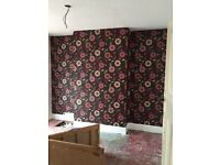 Painter and decorator experienced with fair prices