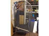 Parrots cage - On offer