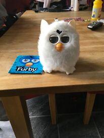 Ferby
