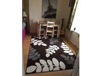 Lovely large living room rug