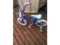 Child's frozen peddle bike