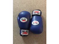 Boxing gloves junior