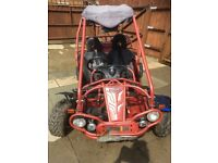 Buggy 2 seater Extreme sport hammerhead