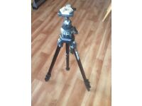 Manfrotto professional tripod with photo and also video head
