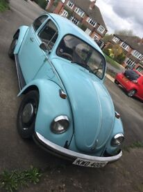 Beloved Beetle looking for a new home