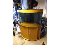 Jewel Trigon 190 litre aquarium and cabinet