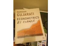 Econometrics by Example by Professor Damodar Gujarati