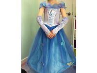 Cinderella Princess Dress