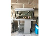 65l fish tank 2 ft full set up with stand heater light lid filter gravel ornament all work in pic