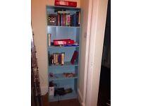 IKEA Blue Bookcase