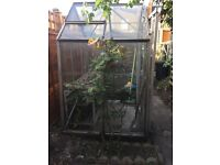 No longer available- Greenhouse Free to a good home, Wimbledon collection only