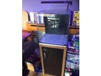 Aqua one fish tank & stand