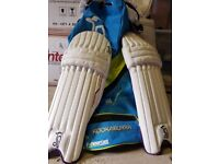 Cricket Gear (Bag, Knee Pads & Gloves - New Condition).