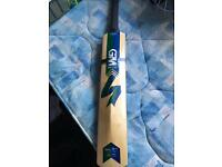 GM Cricket bat.