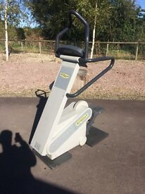 TechnoGym stepper commercial/home gym