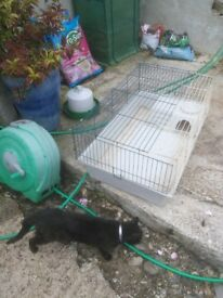 Two indoor guinea pig cage used but still in good condition