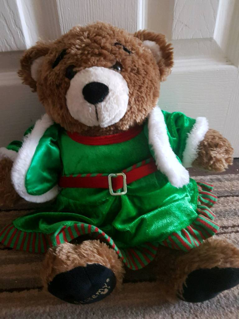 Build a teddy bear never used