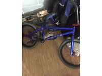 Blue mafia bike