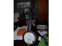 For Sale, 5 string Zither Banjo circa 1900