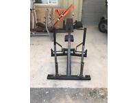 Plate loaded back row gym equipment