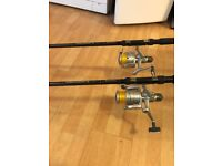 Matching pair of Daiwa Carp/Pike rods with reels