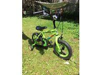 Marci the monkey bike