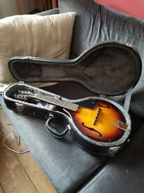 Ozark Mandolin 2073, hard back case, Mandolin for dummies book, strap & 2 picks