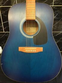 rare art & lutherie guitar