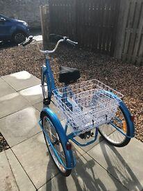 Jorvik tricycle brand new