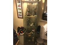 Ikea Glass Cabinet - DETOLD Dark Brown (With Light)