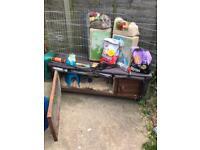 Guinea pig hutch and accessories