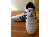 Adidas 'Taekwondo' Men's Trainers (UK10/EU44/US10.5) (never worn)