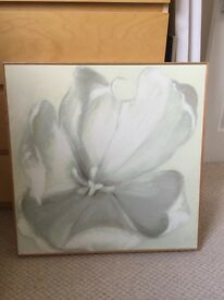 Lotus Flower canvas frame