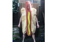 Hot dog fancy dress outfit.