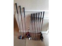 Lynx II Ladies Golf Clubs