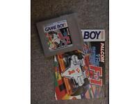The spirit of F1 game boy game