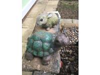 Rabbit and tortoises